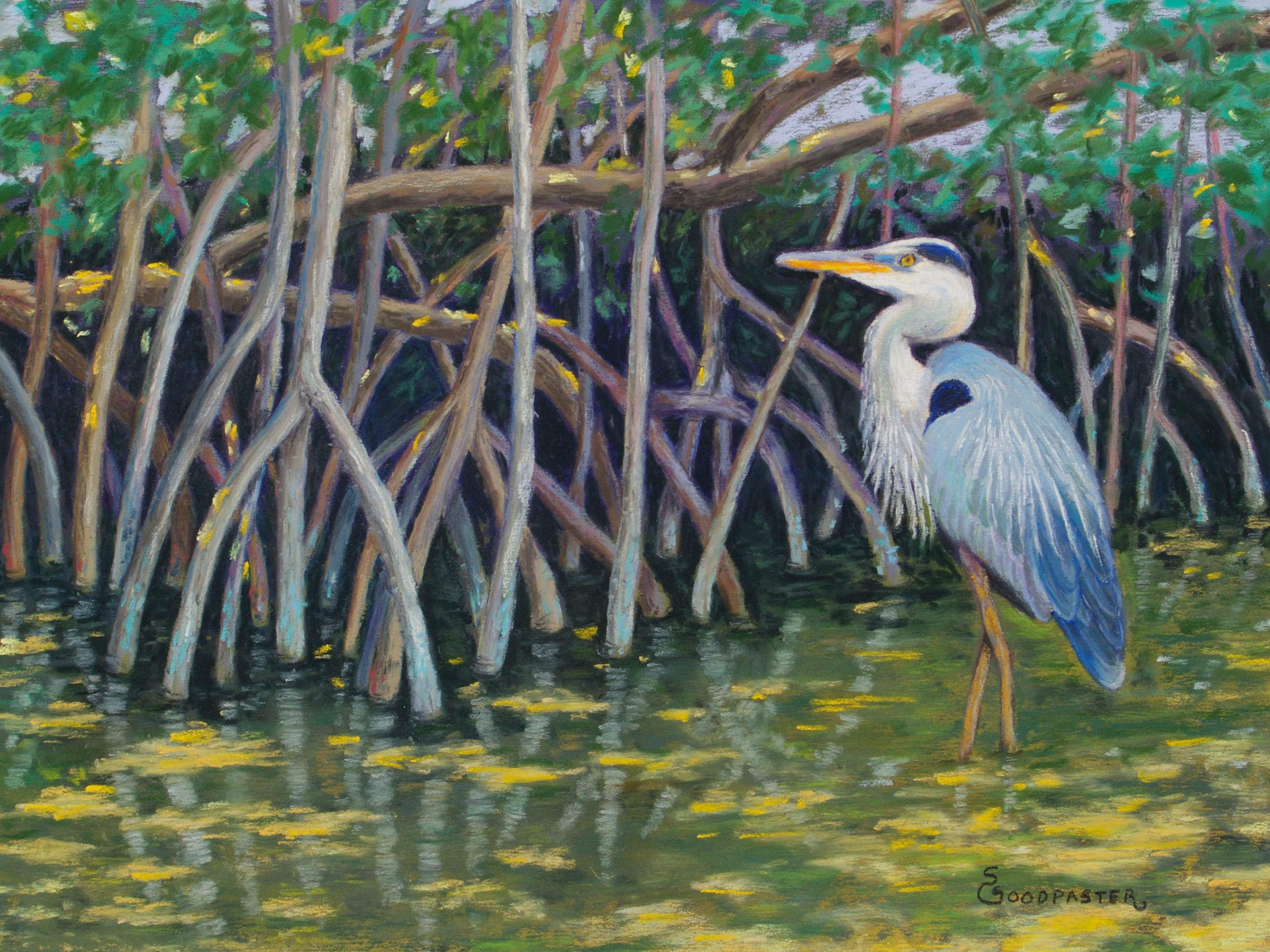 Blue Heron Florida by Glenda Sue Goodpaster