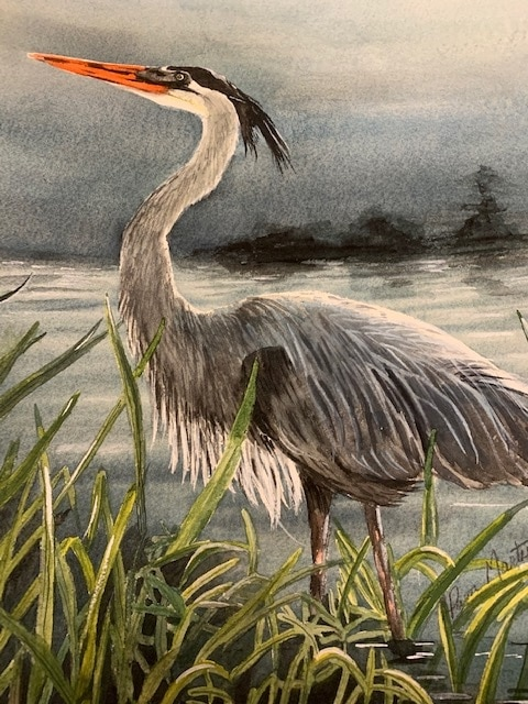 Blue Heron by Pam Marty