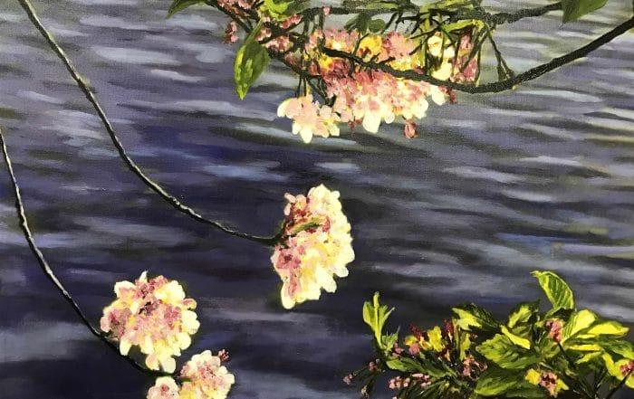 Cherry Blossoms II by Barbara Dove