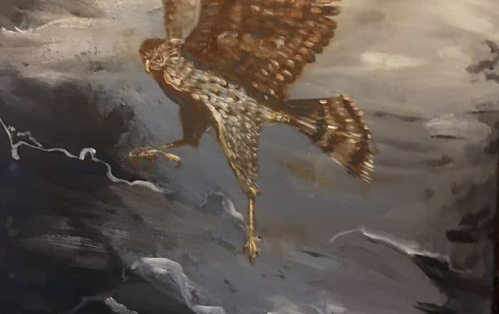Migration Series - Cooper's Hawk by Annette Russo