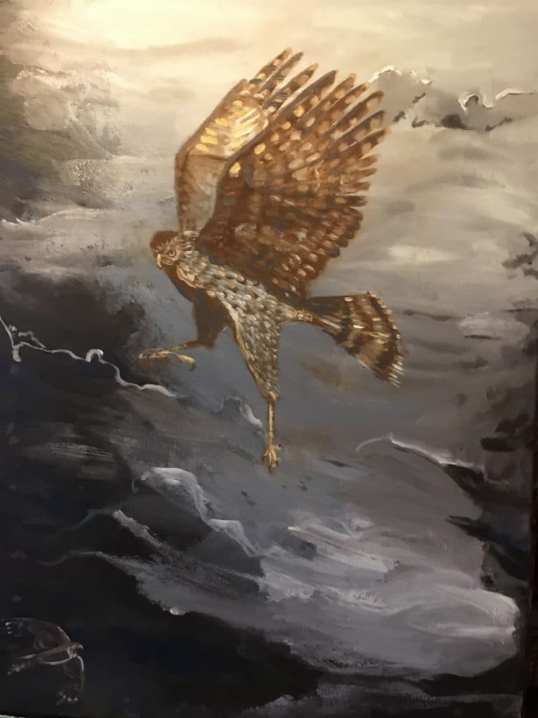 Migration Series – Cooper's Hawk by Annette Russo