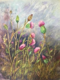 Thistles by Sue Goodpaster
