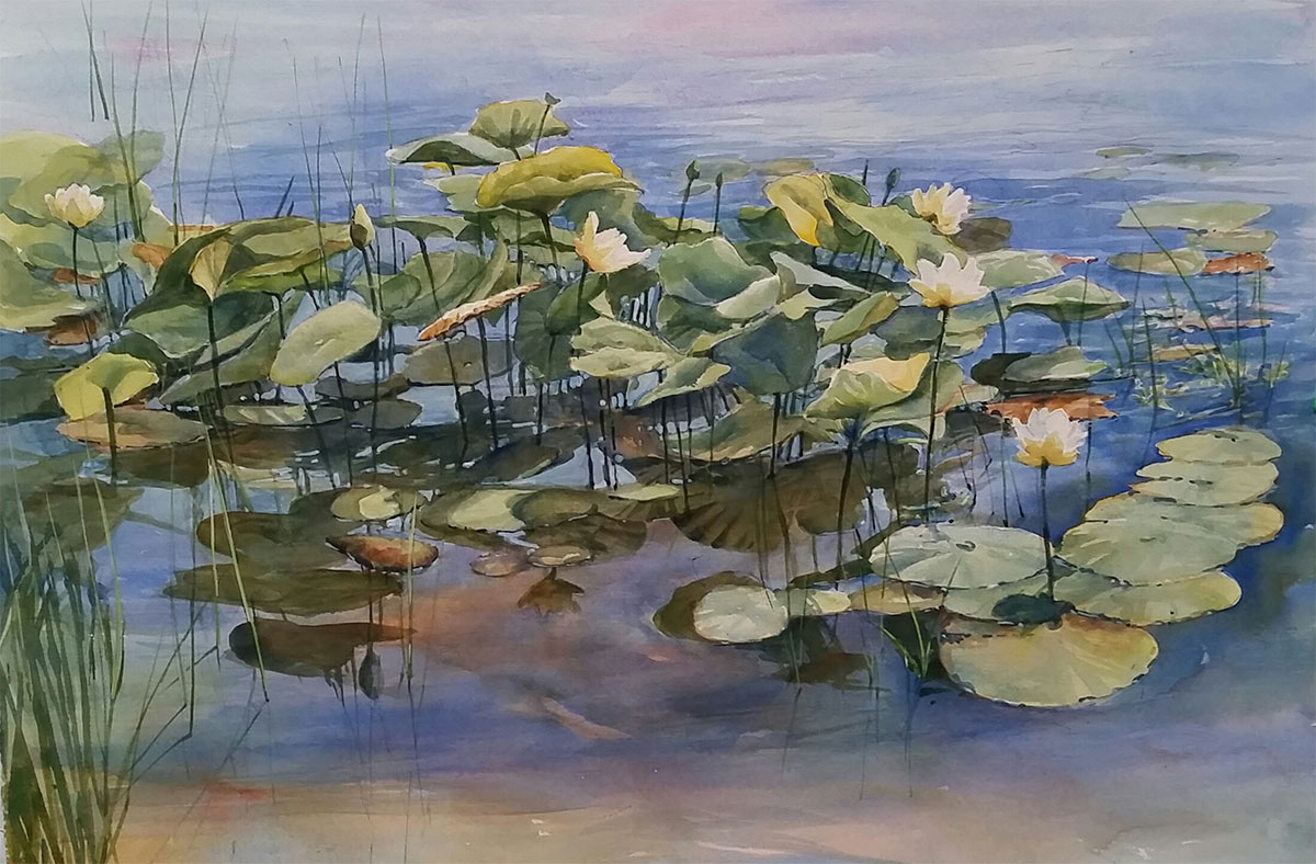 Water Lotus II by Sharon Zimmerman