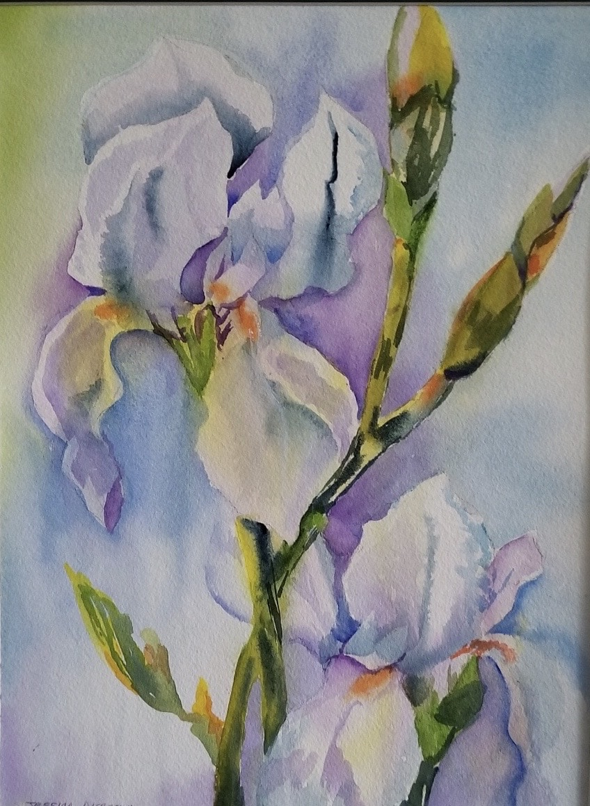 White Iris by Jessica Disbrow