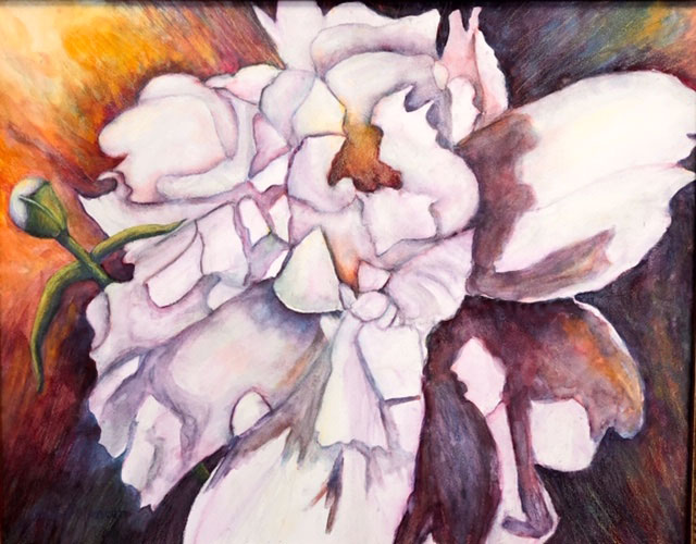 White Peony with Bud by Raenell Spencer
