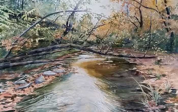Nature's Gift by Sharon Zimmerman